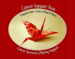 cancer support now logo